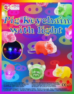 Pig keychain .jpg